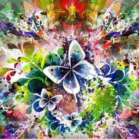 Photo of Butterfly Paint Splatter Design