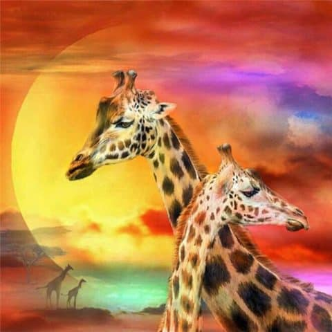 Photo of Giraffe Sunset Design