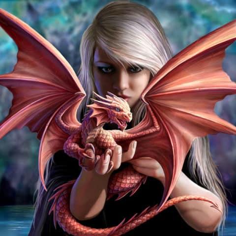 Photo of Baby Dragon Design