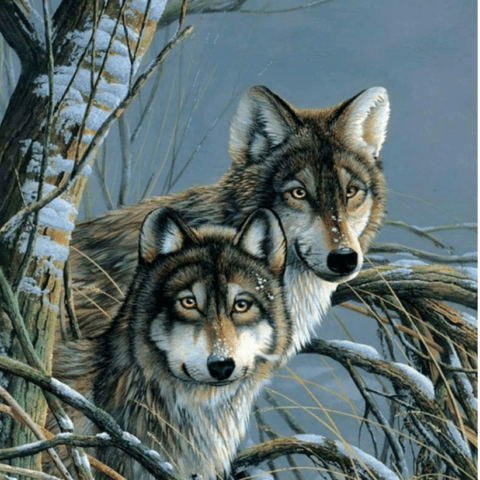 Source image for Wolf Brothers Diamond Painting Kit