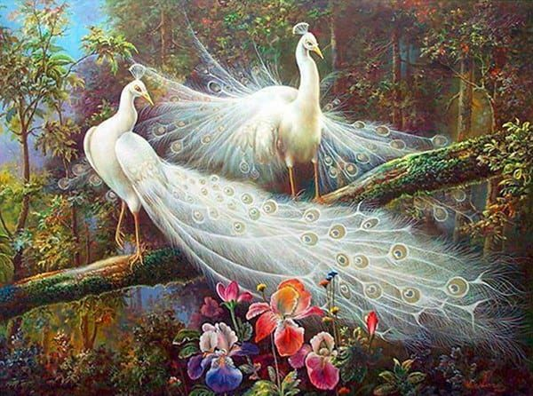 Photo of White Peacock Design