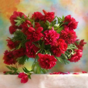 Photo of Red Flowers Design