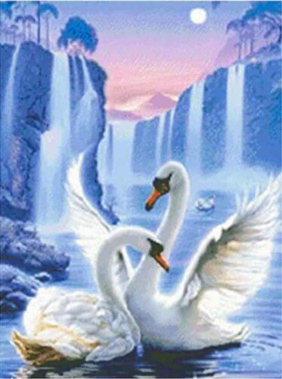 Photo of Swan Falls Design