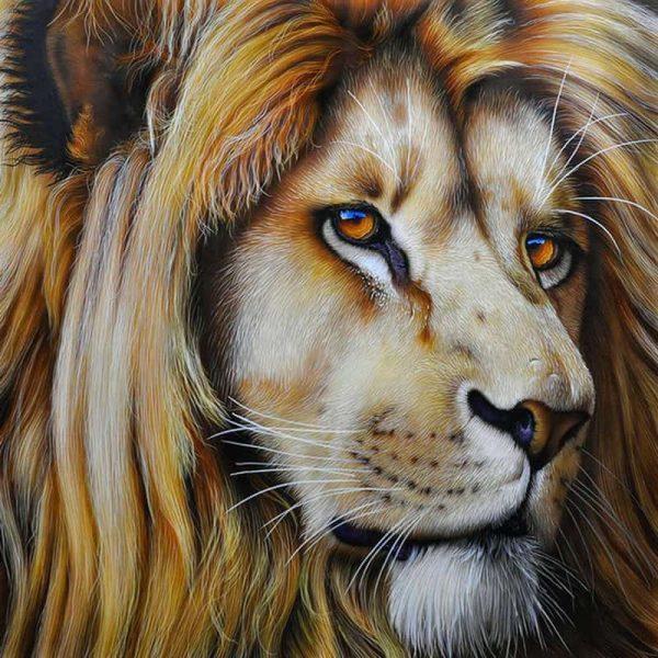 Photo of Lion Portrait Design