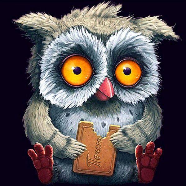 Photo of Chocolate Owl Design