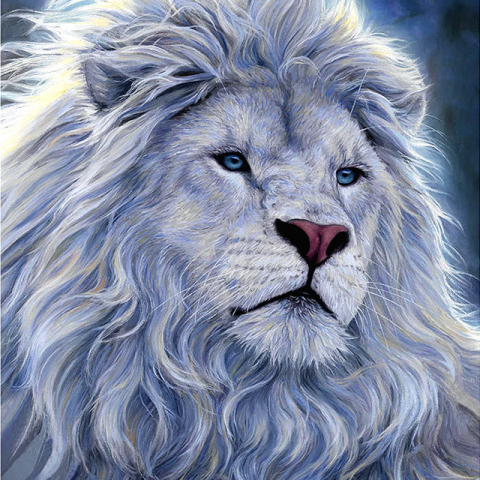 Photo of White Lion Design
