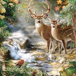 Photo of Deer River Design