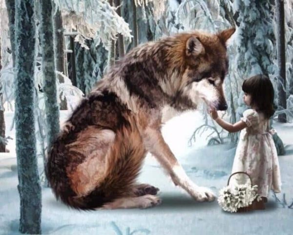 Photo of Wolf Girl Diamond Painting Design