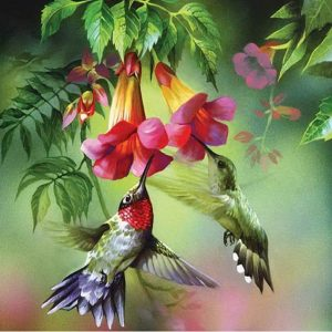 Photo of Hummingbird Design