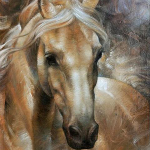 Photo of Horse Portrait Design