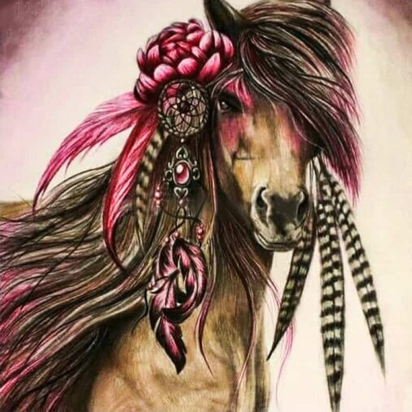 Photo of Horse in Feathers Design