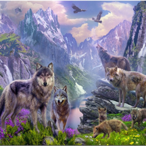 Photo of Wolf Mountain Design