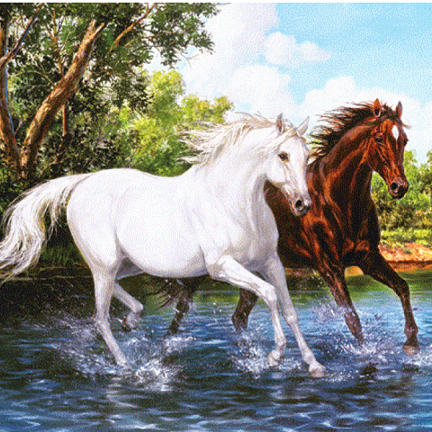 Photo of Horse Crossing Diamond Painting Design