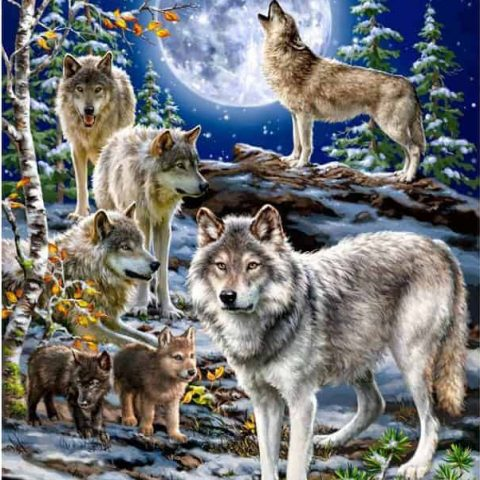 Photo of Full Moon Wolf Design