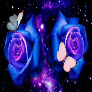Photo of Space Roses Design