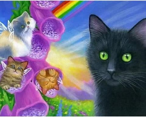 Photo of Cat Rainbows Design