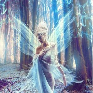 Photo of Blue Fairy Design