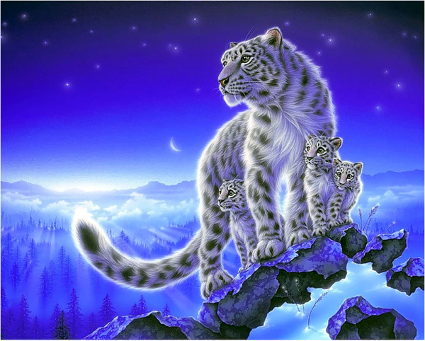 Photo of White Mountain Cub Diamond Painting Design