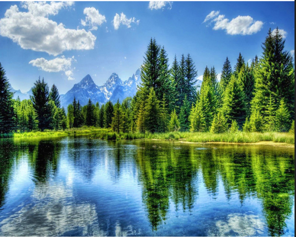 Photo of Forest Lake Diamond Painting Design