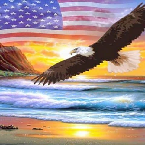 Photo of American Eagle Diamond Painting Design
