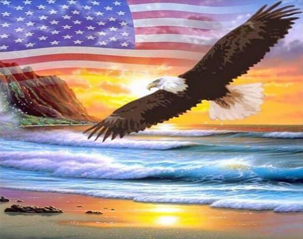 Photo of American Eagle Diamond Painting Design