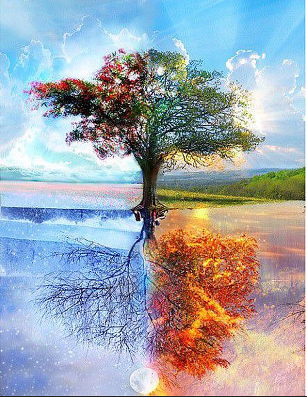 Photo of Four Seasons Tree Diamond Painting Design