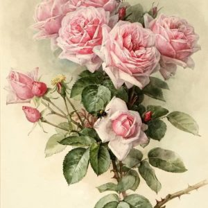 Photo of Pink Rose Bouquet Diamond Painting Design