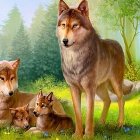 Photo of Wolf Family Diamond Painting Design