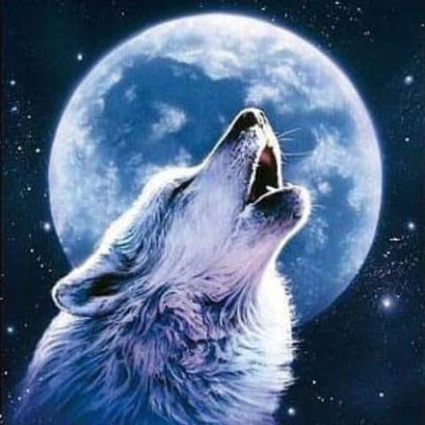 Wolf Moon Howl Diamond Painting Design