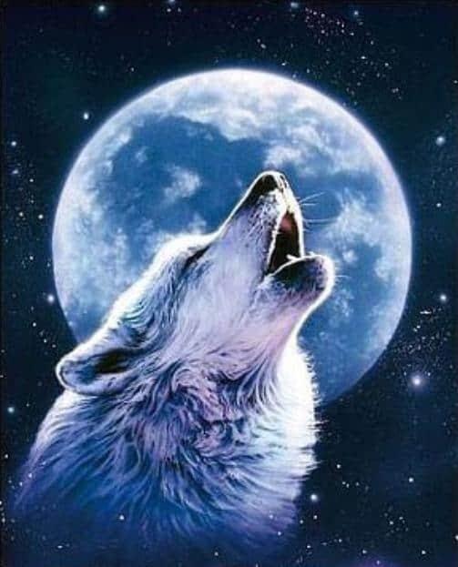 Wolf Moon Howl Diamond Painting Design