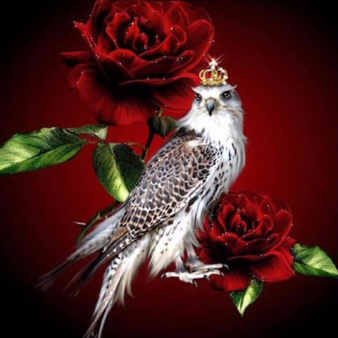 Photo of Rose Falcon Diamond Painting Design