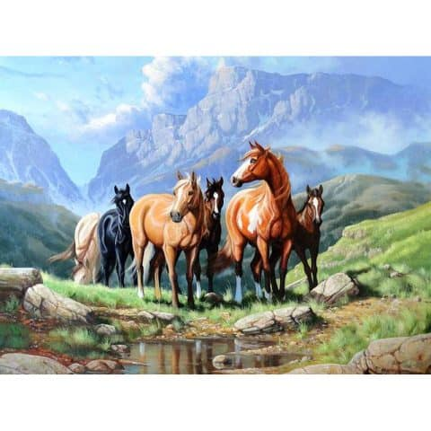Photo of Horse Plains Diamond Painting Design