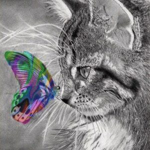 Photo of Butterfly Cat Diamond Painting Design