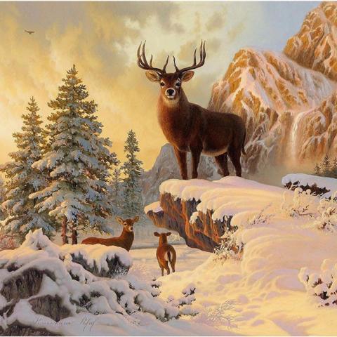 Photo of Mountain Buck Diamond Painting Design