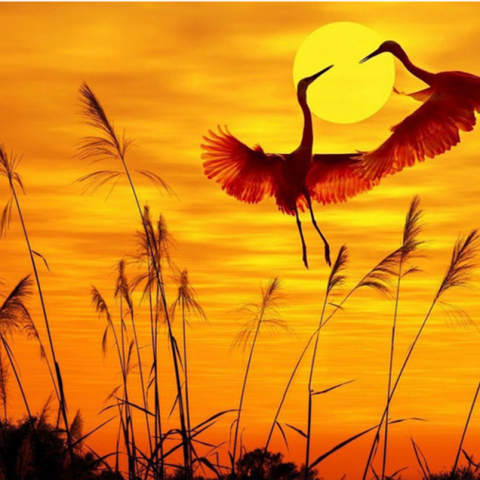 Photo of Sunset Crane Diamond Painting Design
