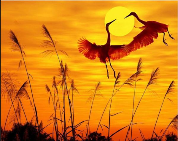 Photo of Sunset Crane Diamond Painting Design