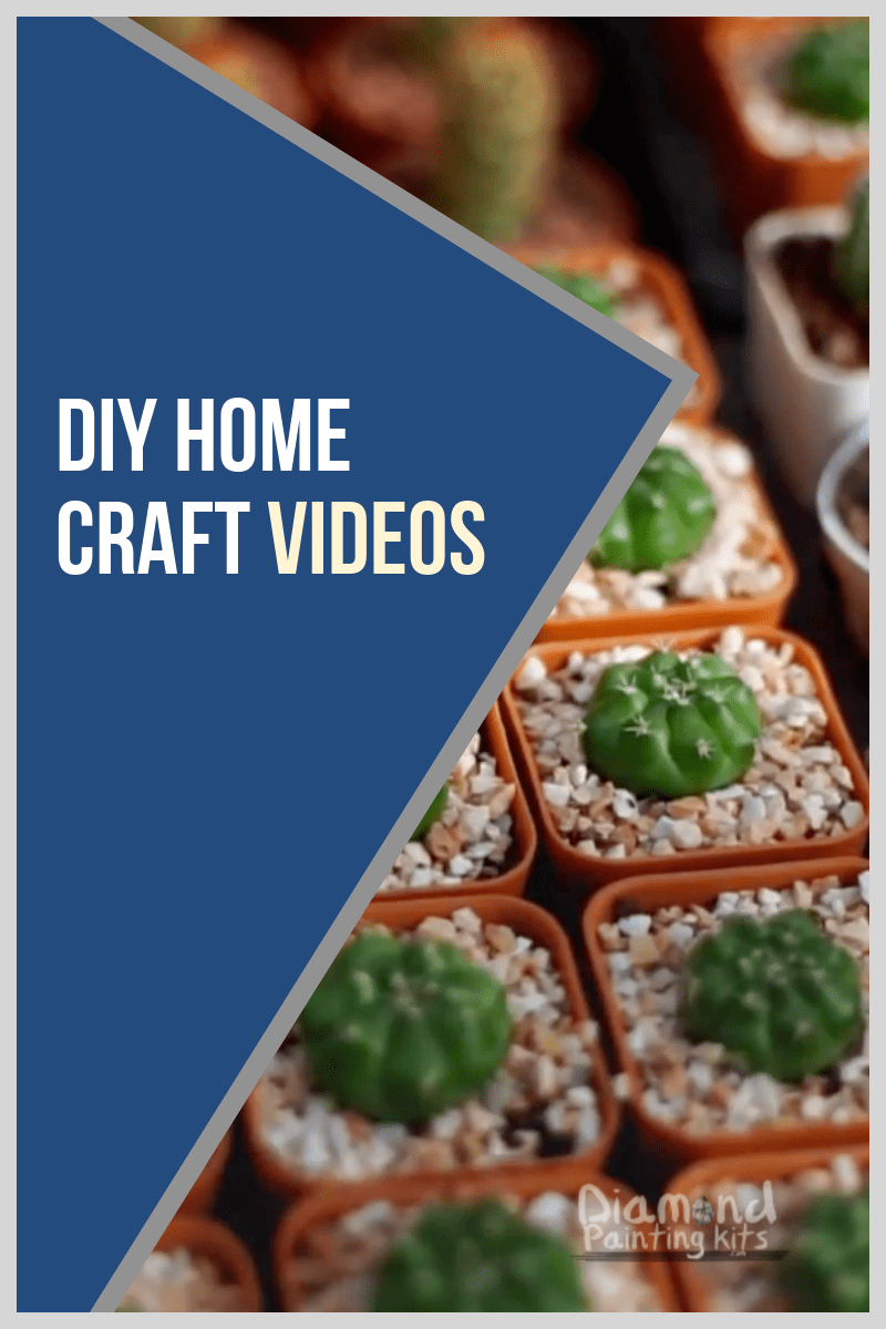 Daily Viral DIY Videos: Succulent Box, Home Decor, & Leather Vase