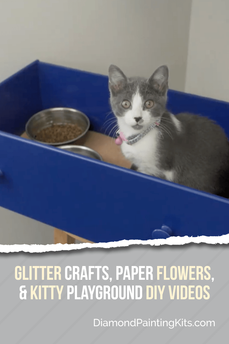Daily Viral DIY Videos: Glitter Crafts, Paper Flowers, & Kitty Playground