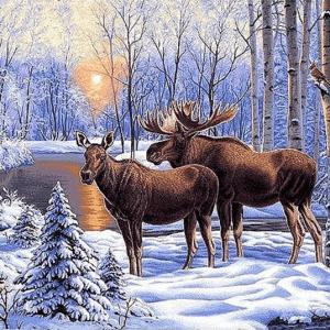 Photo of Moose Winter Lake Diamond Painting Design