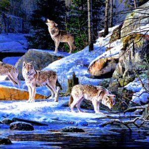 Photo of Winter Wolf Pack Diamond Painting Design
