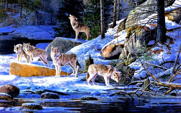 Photo of Winter Wolf Pack Diamond Painting Design