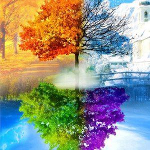Photo of Four Seasons Tree 2 Diamond Painting Design