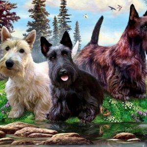 Photo of Roaming Puppies Diamond Painting Design