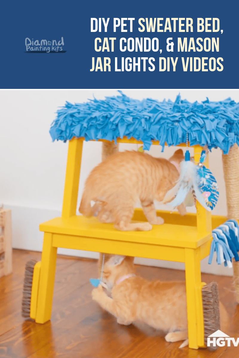 Daily Viral DIY Videos: DIY Pet Sweater Bed, Cat Condo, & Mason Jar Lights