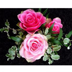 Photo of Two Pink Roses Diamond Painting Design