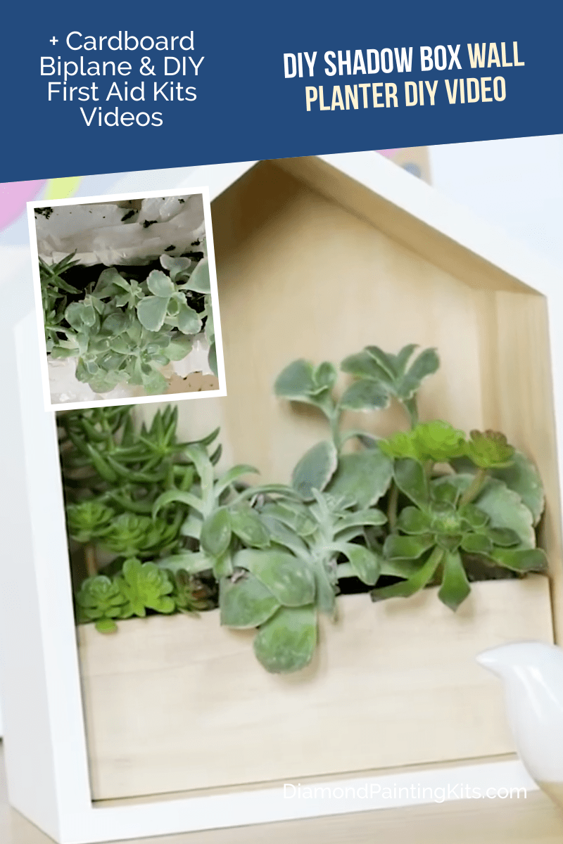 Daily Viral DIY Videos: DIY Wall Planter, Cardboard Biplane, & First Aid Kits