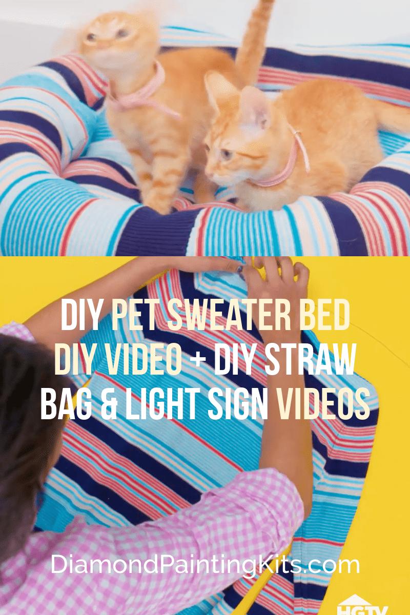 Daily Viral DIY Videos: DIY Straw Bag, Light Up Sign, & Pet Sweater Bed